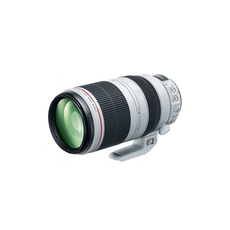 Canon EF 100-400mm f 4.5-5.6L IS II Telephoto Zoom Lens