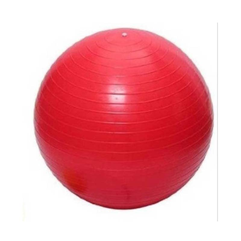 Gym Exercise Ball For Body Fitness yoga Ball
